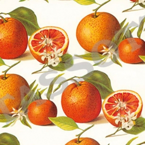 Orange Papier Grafiche Tassotti