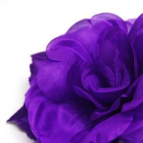 Ansteckblüte lila von Heinz Müller