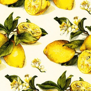 Zitrone Geschenkpapier von Grafiche Tassotti