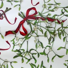 Mistel  Papier von Grafiche Tassotti